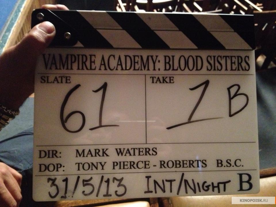 Фото обзор Академии вампиров .