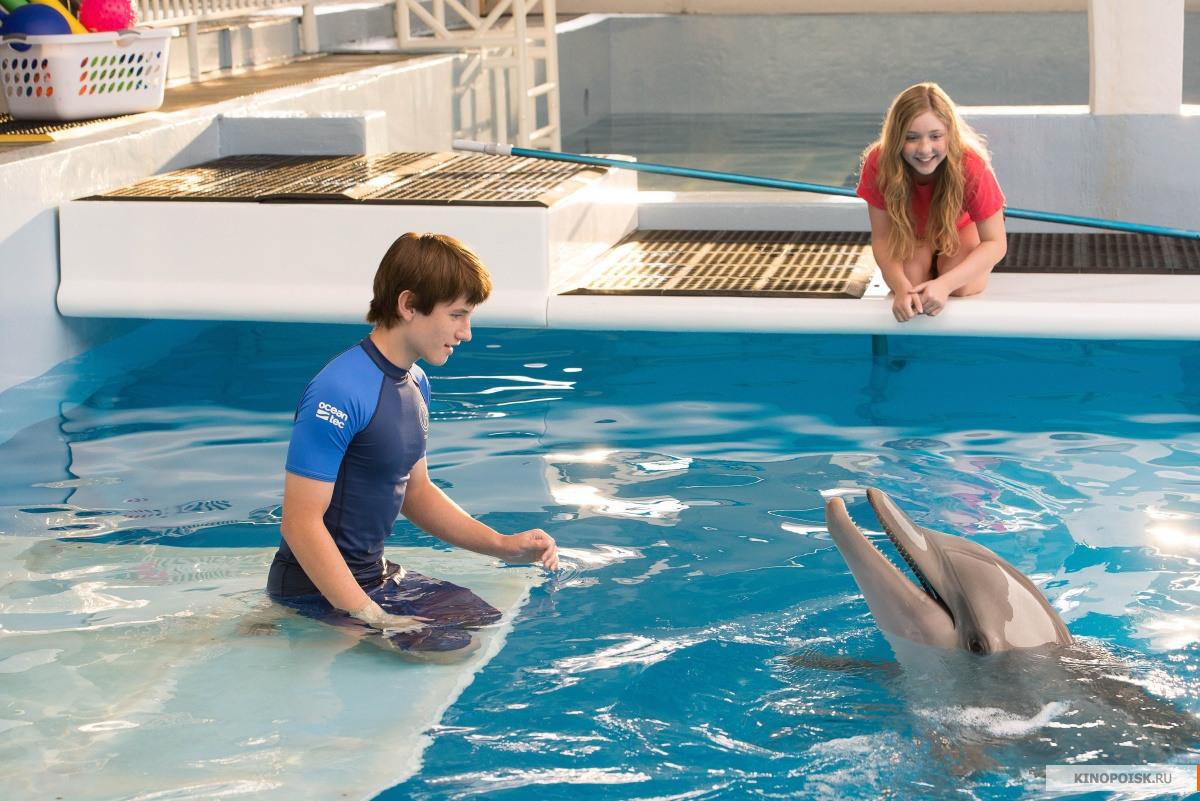 Кадры: История дельфина 2 (2014)