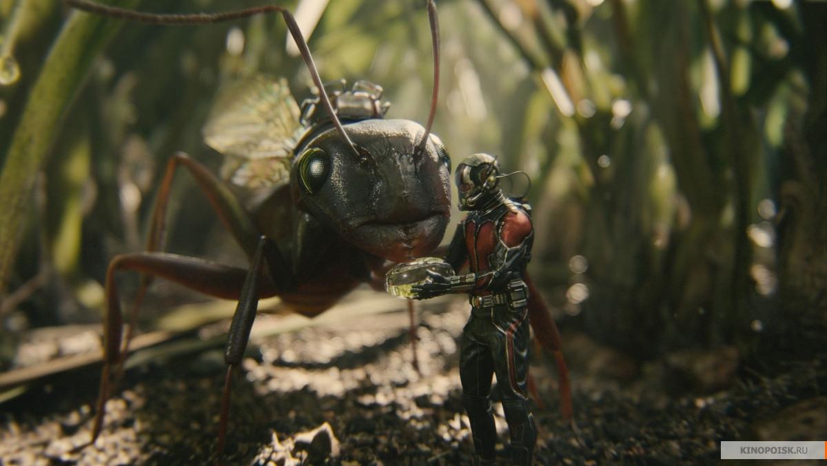 кадр №3 из фильма Человек-муравей