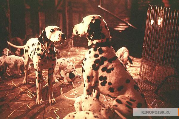 101 далматинец фильмы про собак