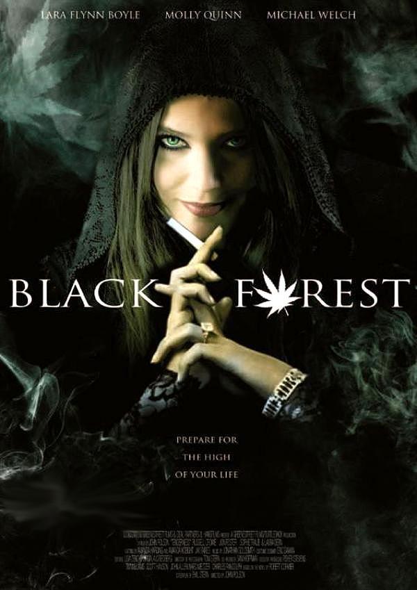 «Смотреть Темный Лес Ганс Грета И 420-я Ведьма Онлайн» — 2008